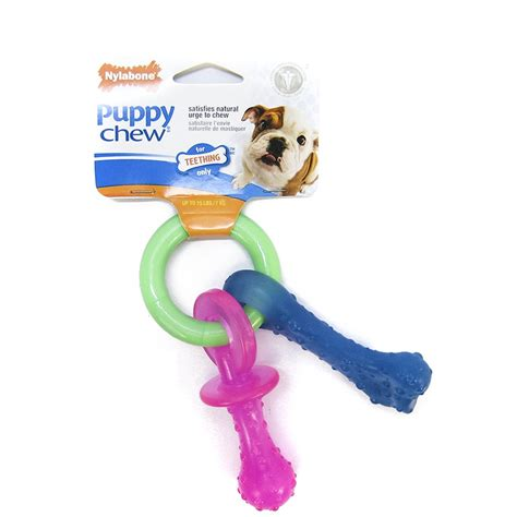 chew toys for teething puppies nylabone puppy chew products at pet mountain