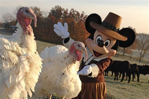 thanksgiving  christmas dining  walt disney world