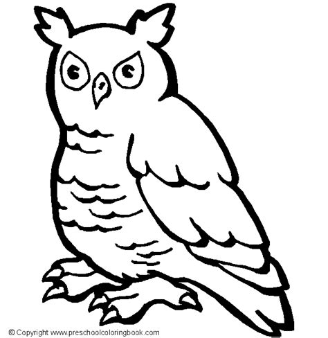 preschool coloring pages of birds parrot coloring book coloring pages