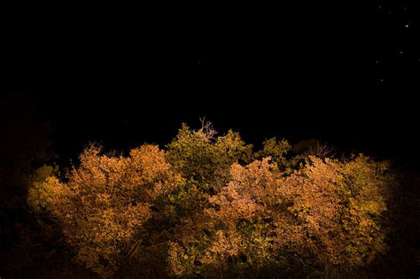 Low Light Landscape Photography Low Light Photography Tips