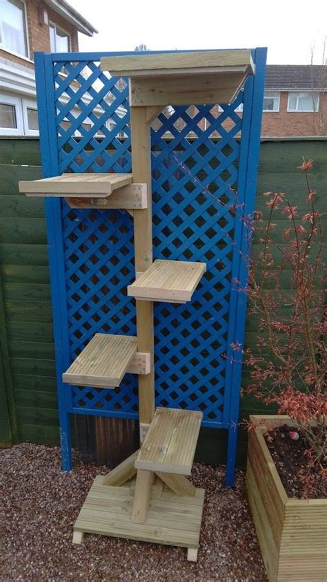 images  outdoor cat trees  pinterest cats
