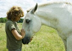 the clinical practice of equine assisted therapy including horses in human healthcare books 1000 images about therapy horses on therapy