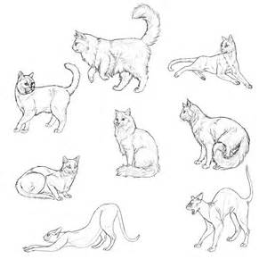 how to draw doodle cat how to draw cats step by step with monika zagrobelna