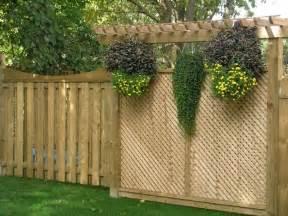 Backyard privacy lattice ideas yard privacy fence plant