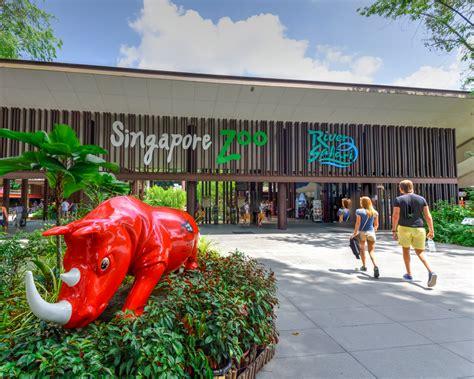 rainforest lumina  singapore zoo  kids family travel