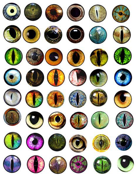 Printable Animal Eyes | animals eyes digital collage sheet 1x1 inch circles