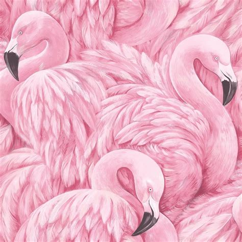 flamingo feathers wallpaper pink flamingo wallpaper animal print modern birds feathers