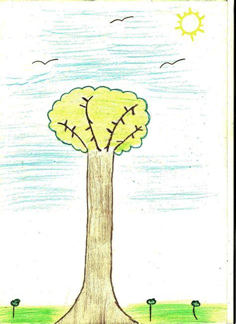 test dell albero il test dell albero estri maestri
