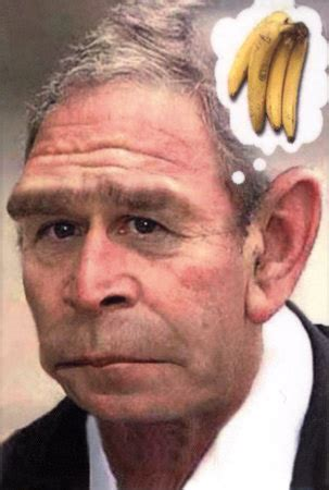 libtards going ape over monkey cartoon | doctor bulldog