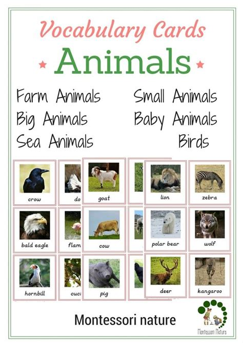 montessori printables animals vocabulary cards animals montessori printables for