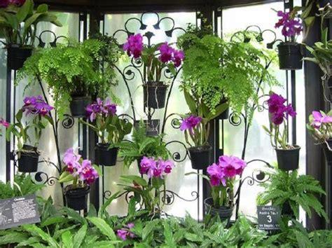 Pot Anggrek Gantung aneka tanaman untuk taman teduh dan asri