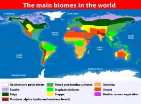 Biomes Of The World Map by Pin This Map Shows The Eight Biomes Of The World The