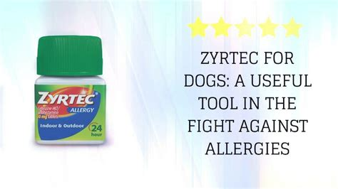 zyrtec dosage for dogs zyrtec for dogs a useful tool in the fight against allergies certapet