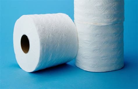 i use toilet paper what did people use before toilet paper mental floss