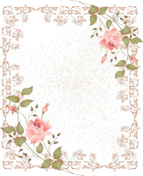 peach pattern png pink rose clipart borders vintage color pencil and in