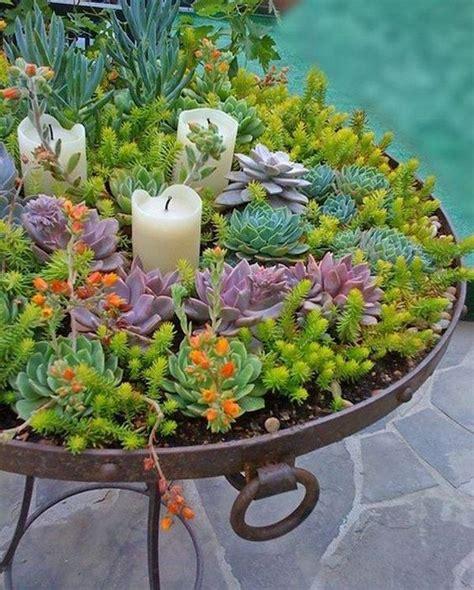 Ideas For Indoor Succulents Design Creative Indoor And Outdoor Succulent Garden Ideas Succulents Garden Garden Ideas And Planters