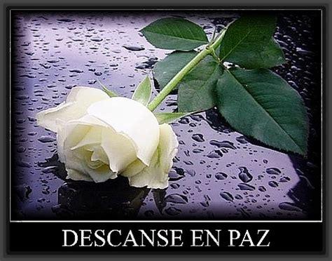 imagenes de luto blancas encuentra algunas imagenes de rosas de luto fotos de luto