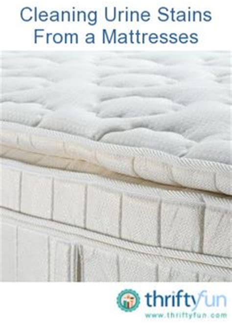 How Do I Remove Stains From A Mattress by 1000 Images About Cleaning Made Easy On