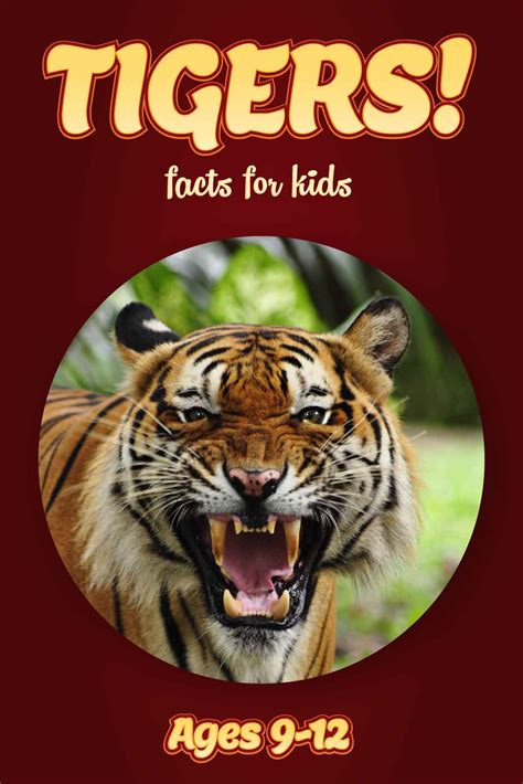 12 best images about non fiction books in my growing tiger facts for kids kids nonfiction book clouducated ages 9 12