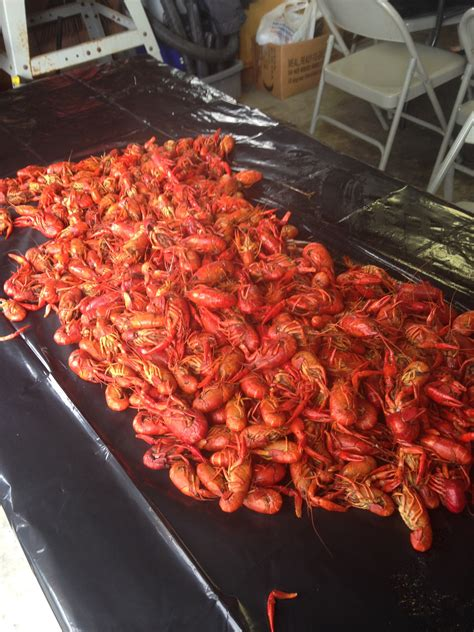 Crawfish Table Top by Louisiana Crawfish Boil Gadaboutfood