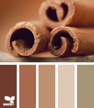cinnamon color cinnamon color palettes and colors on