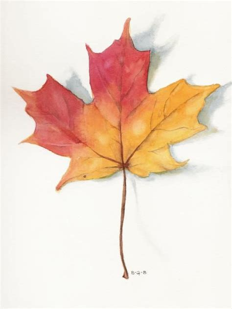 watercolor tattoo leaves 41 best fall leaves images on maple