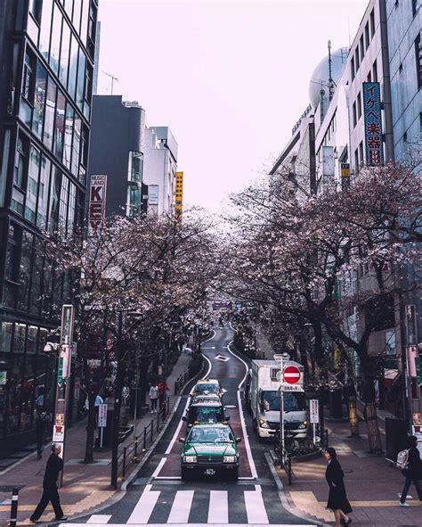 street   japan  tourists dont