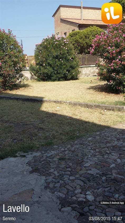 meteo lavello oggi foto meteo lavello lavello ore 15 48 187 ilmeteo it