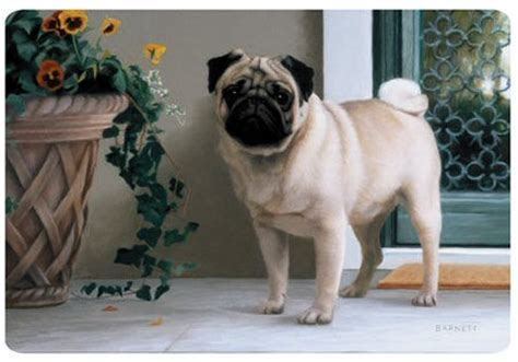 pug related gifts pug doormat c animal gift ideas