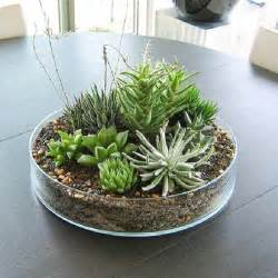 Dining Table Plant Centerpieces 22 Table Decorations And Centerpiece Ideas With Succulents