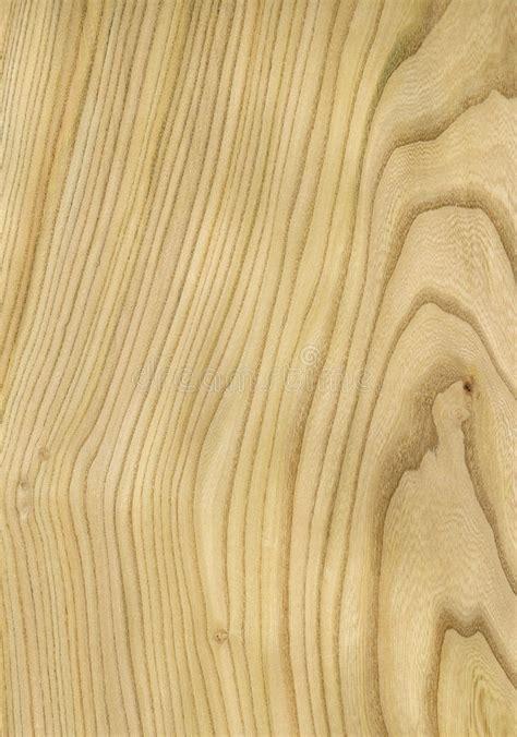 imagenes libres madera textura de madera del olmo foto de archivo imagen de