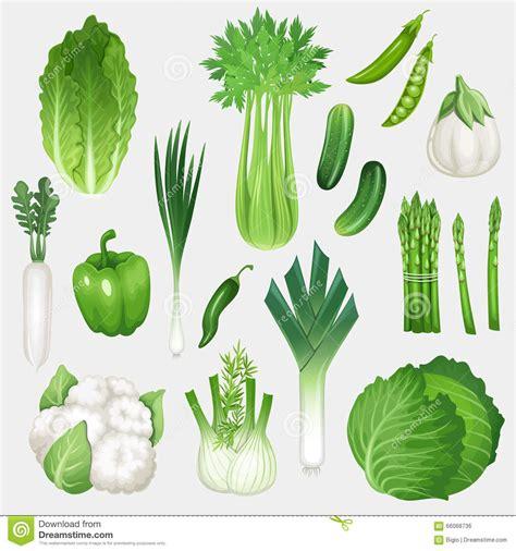 green vegetables p green vegetables clipart www imgkid the image kid