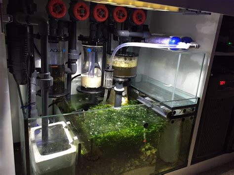 How To Run Plumbing by Red Sea Reefer 350 Sump Hard Piping Setup Mylife
