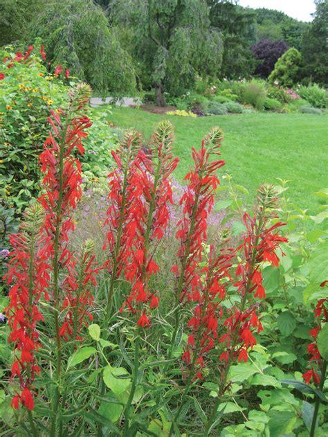 Botanical Garden Employment New York Botanical Garden Employment Garden Interesting New York Botanical Garden Chicago