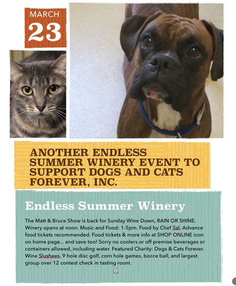 dogs and cats forever endless summer winery dogs and cats forever inc