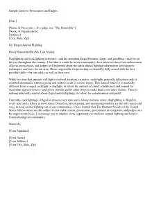 Letter To A Judge Template by Best Photos Of Formal Letter To Judge Template