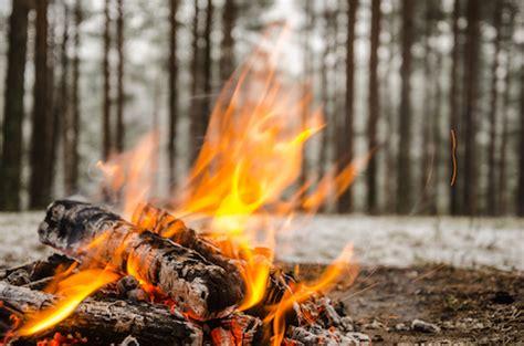 michael denton  fire   close call evolution news