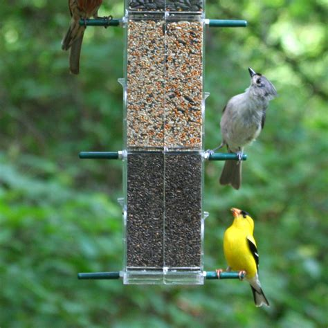 backyard birds store wild birds unlimited bird food bird seed bird feeder html