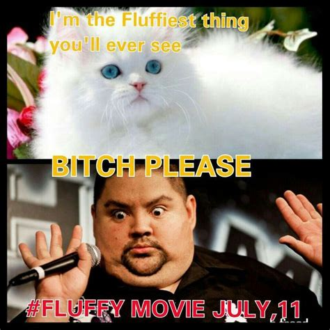 Gabriel Iglesias Memes - 1000 images about fluffy gabriel iglesias on pinterest
