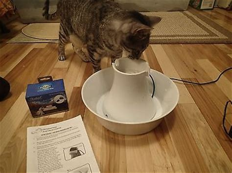 Petsafe Drinkwell Ceramic Pagoda For Pets Manual by Porcelain For Sale Classifieds