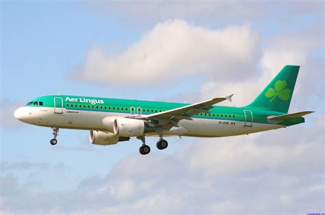 Aer Lingus Help Desk Cork Airport by Cork Airport Aer Lingus Fleet
