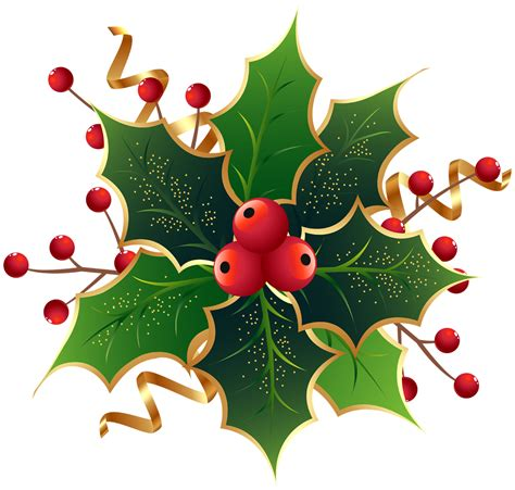 clipart holly christmas holly png images free download