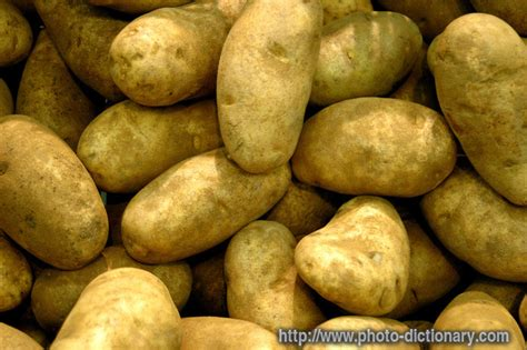 Potato Means by Potatoes Photo Picture Definition At Photo Dictionary