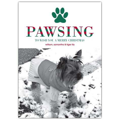 pawsing  wishing pet holiday photo cards paperstyle