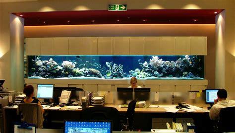 aquarium design uk the aquatic design centre adc aquarium design bespoke