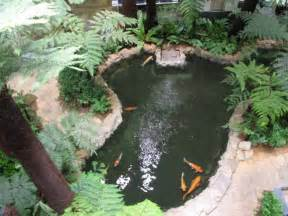 how to make an indoor fish pond 17 best images about indoor koi pond on pinterest gardens koi and indoor pond