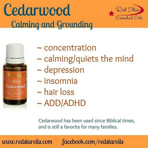 Youngliving Essential Cedarwood 15ml 17 best images about cedarwood on depression frankincense essential and