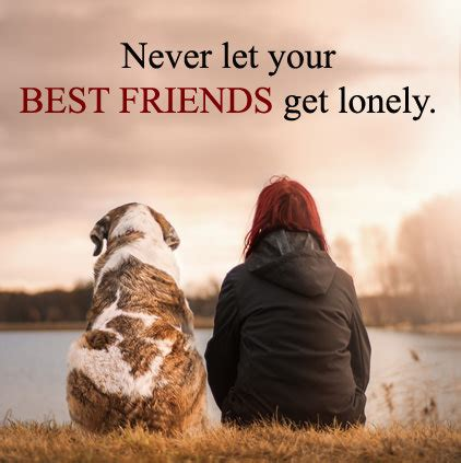 friends dp  whatsapp group beautiful friendship quotes images