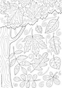 Christmas Crafts For Older Kids - autumn leaves colouring page