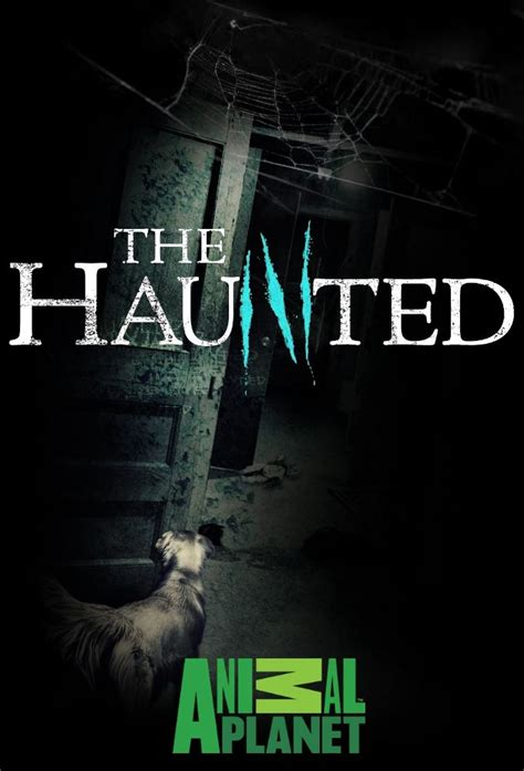 murder in room 12 the haunted s02e06 murder in room 12 720p hdtv x264 dhd torrent kickass torrents